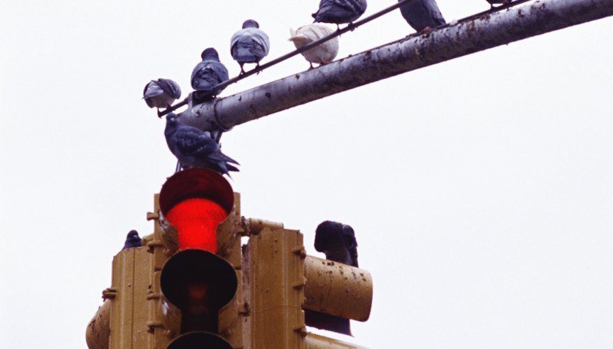 Refusing to pay red light tickets can seriously dent your credit.