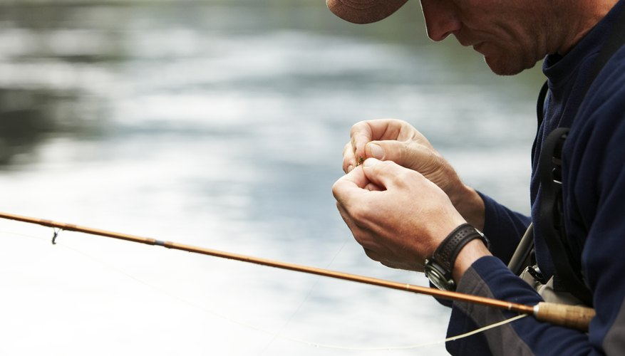 Six Different Types of Bait Used for Fishing