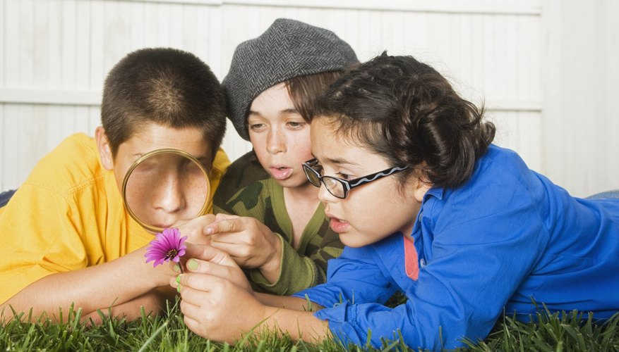 Kids playing outside with a magnifying glass.