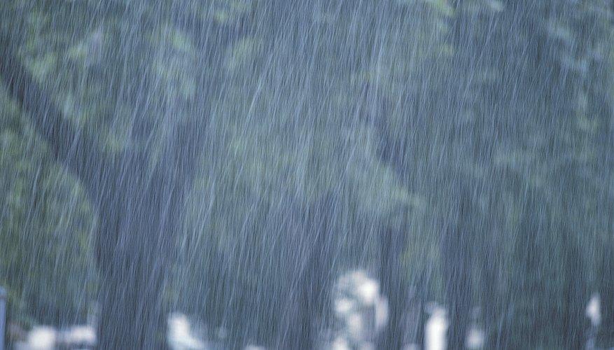 En circunstancias normales, se producen niveles menores de lixiviación con las precipitaciones típicas, y la descomposición de los materiales orgánicos en la superficie reabastece el suelo.
