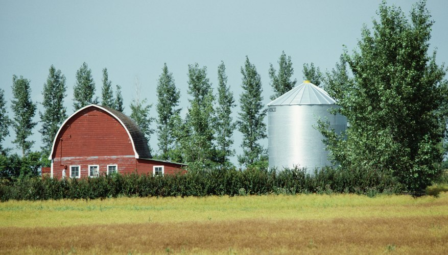 You can pass an Illinois home, farm or shopping center to a new owner with a deed.