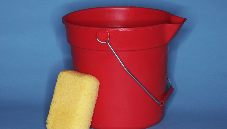 Fill the bucket with a stain and odor removing solution.