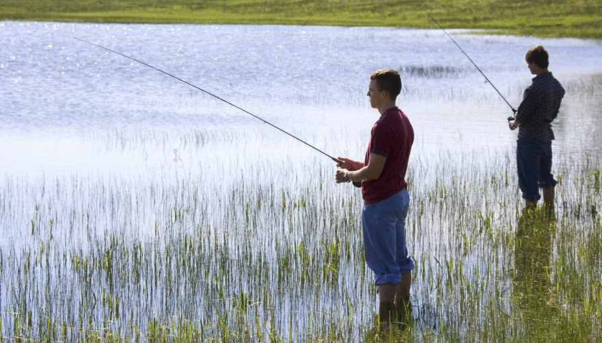 The Best Lures for Largemouth Bass in Ponds