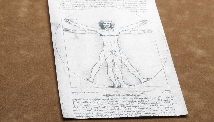 Da Vinci tenía conocimientos avanzados de anatomía humana.