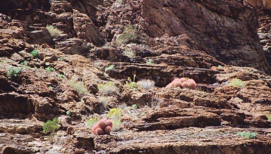 Desierto de Mojave.