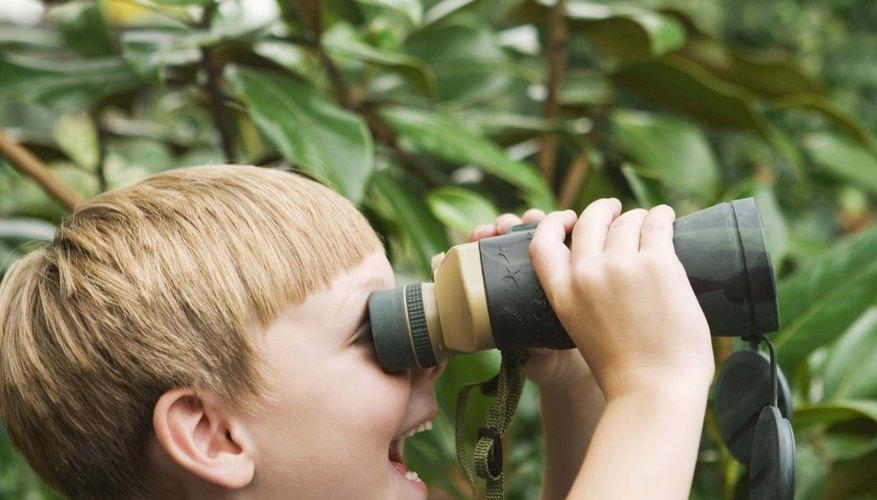 Tu hijo no necesita de un equipamiento costoso para hacer sus propios binoculares en casa.