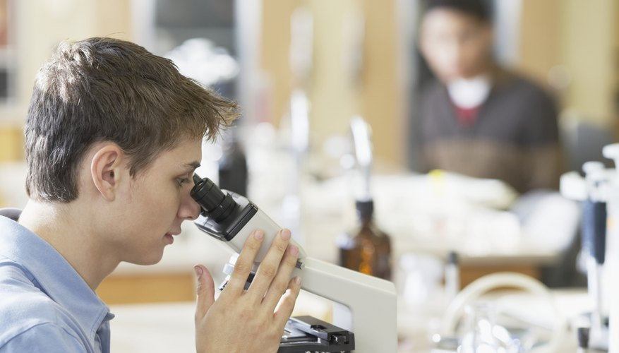 Student looking through microscope in biology classroom.