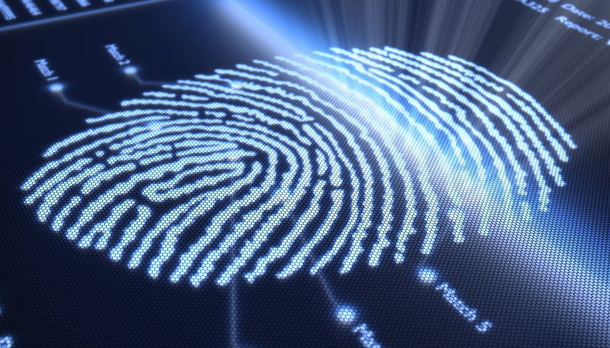 You will most likely need to bring identification wherever you get fingerprinted.