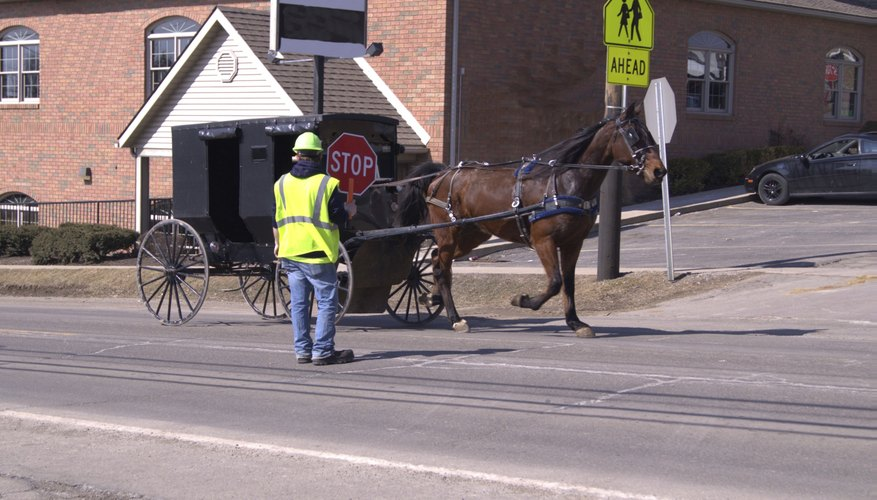 Amish buggy being directed in construction.