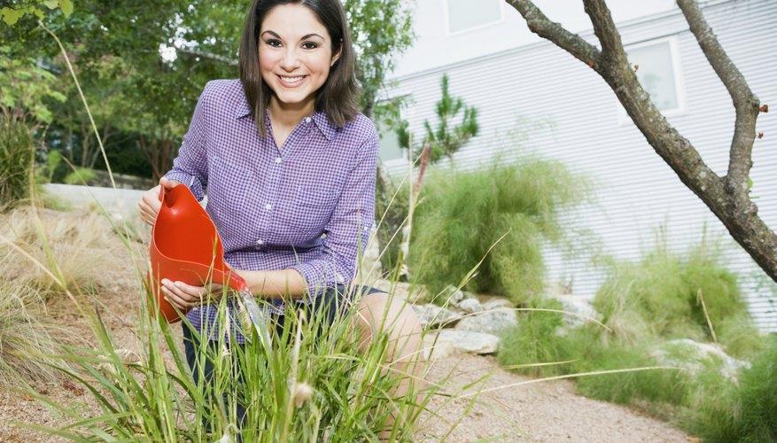 woman watering grass in yard