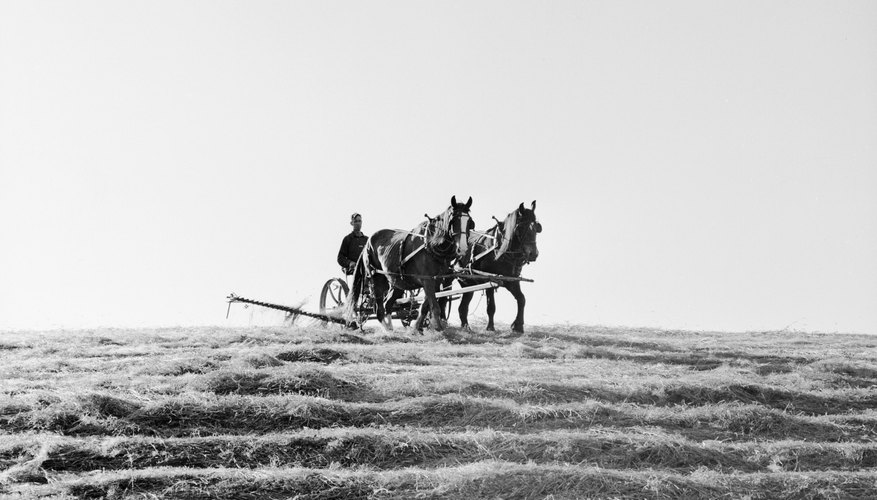 BCS tillers surpassed horse-drawn farming methods.