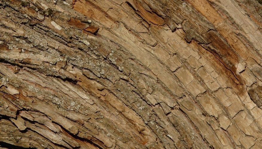 Se puede usar madera en un proyecto de ciencia para demostrar la expansión y contracción.