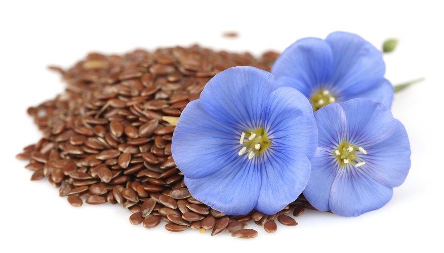 Flaxseeds.