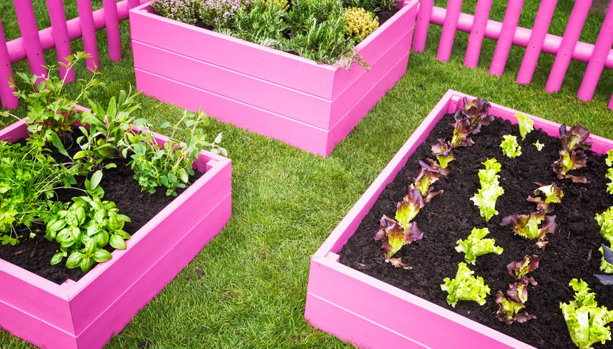 Use different sizes of raised garden beds to meet your needs and preferences.