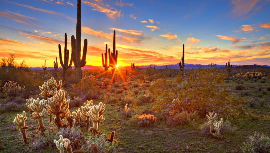 When to capture the famous desert sunsets of Arizona