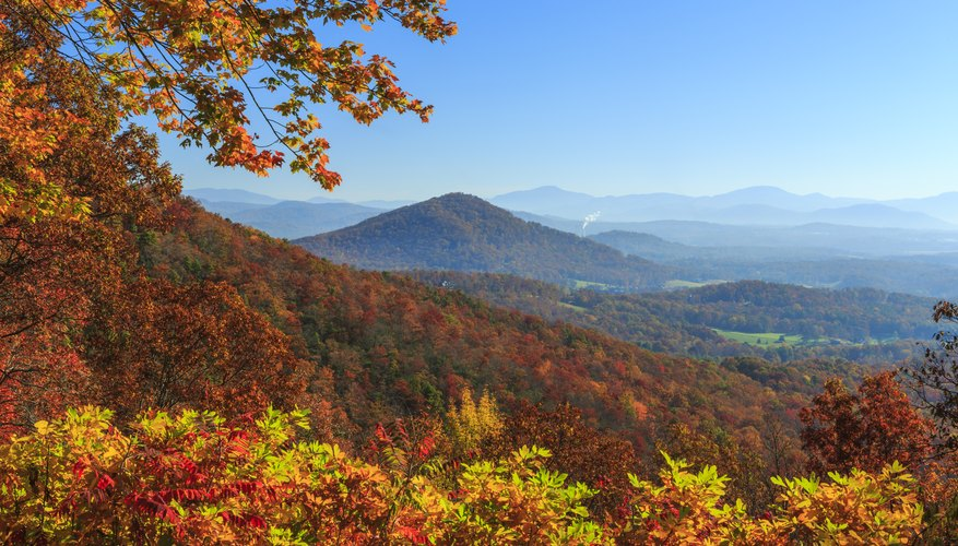 When do the Leaves Change in North Carolina?