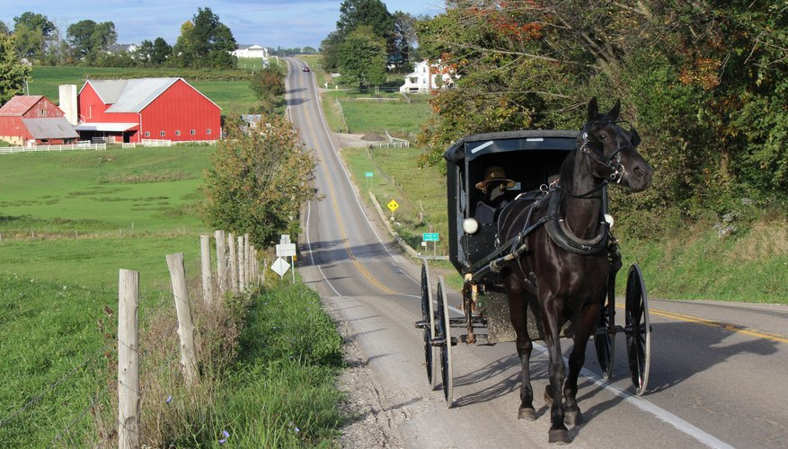 Best Time to Visit Amish Country, PA