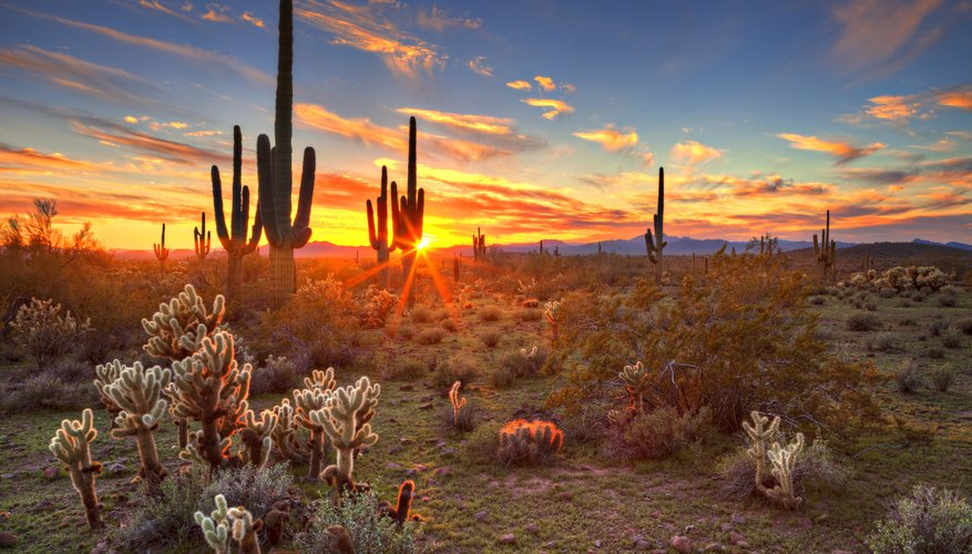 Best Time to Visit Arizona