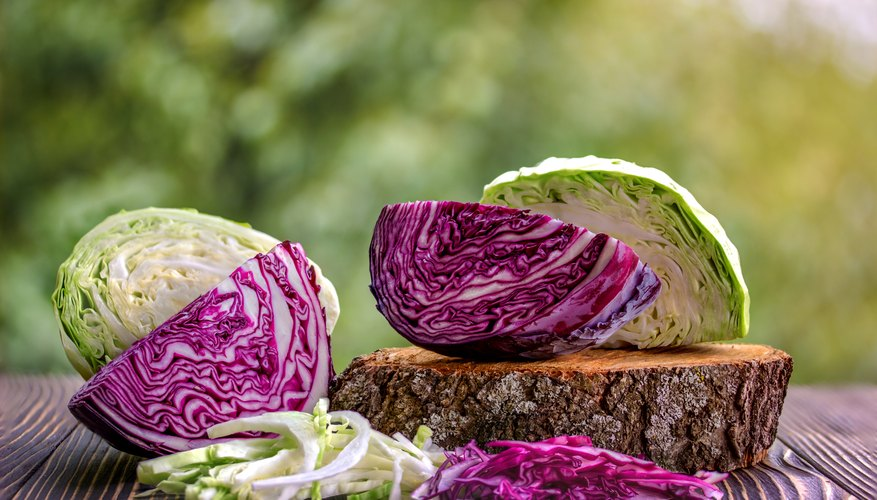 One project involves making a color-changing liquid from cabbage.