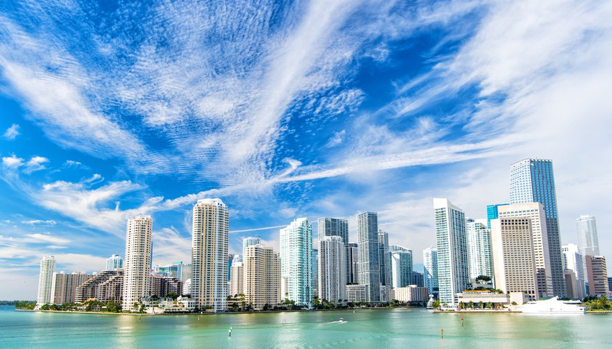 Your Most Pressing Miami Questions Answered
