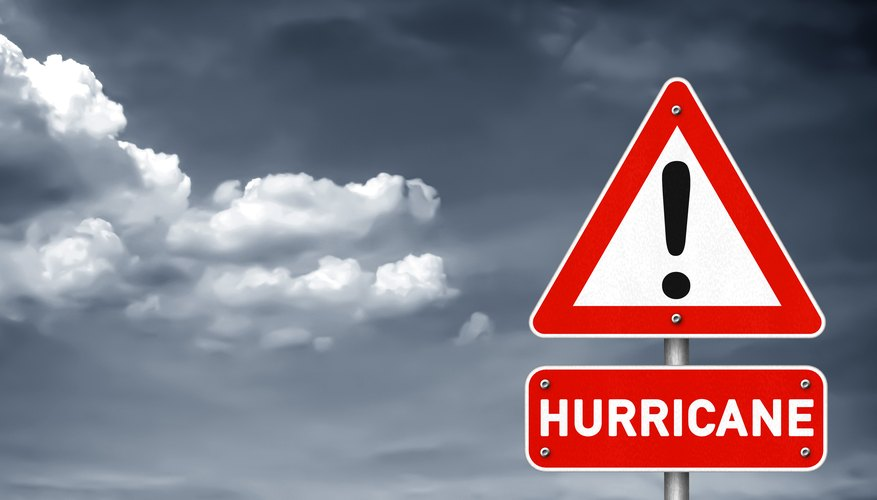 What Should You Do if a Hurricane Watch is Issued?