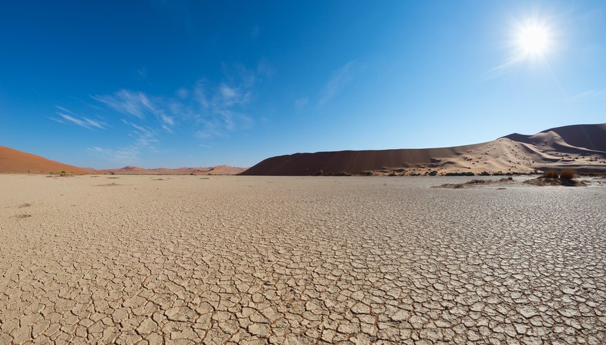 abiotic factors of a desert ecosystem sciencing