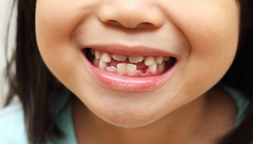 When do baby molars fall out mom life a look at the ages and stages of teeth ccuart Gallery