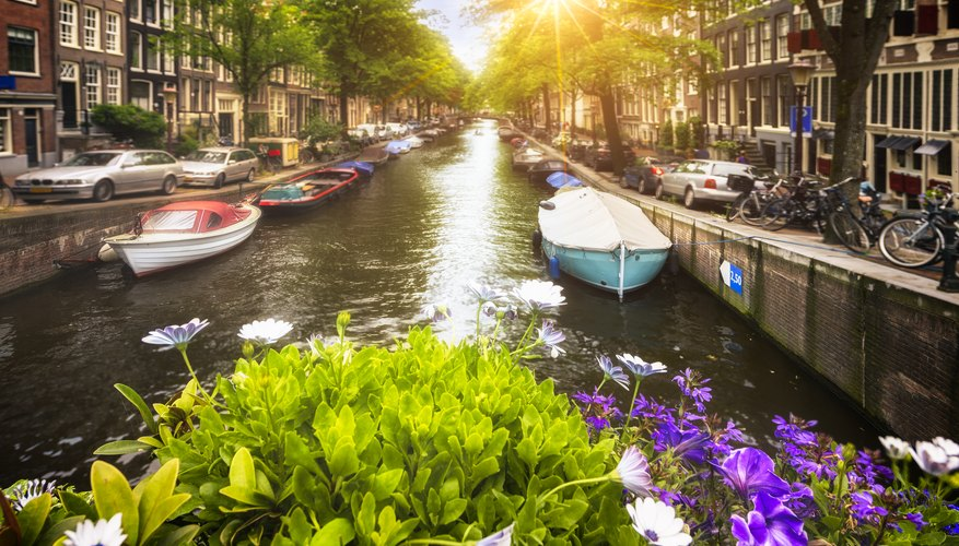 What is Amsterdam Known For?