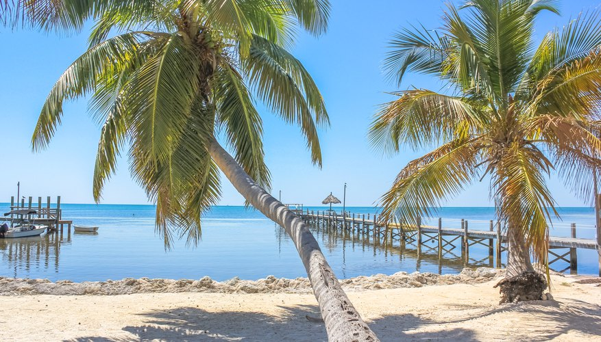 Best Time to Visit Key West