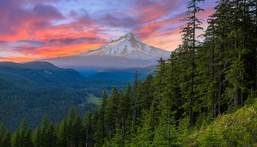 The Best Time to Visit Oregon