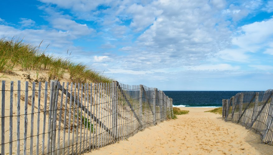 The Best Time of Year to Visit Cape Cod