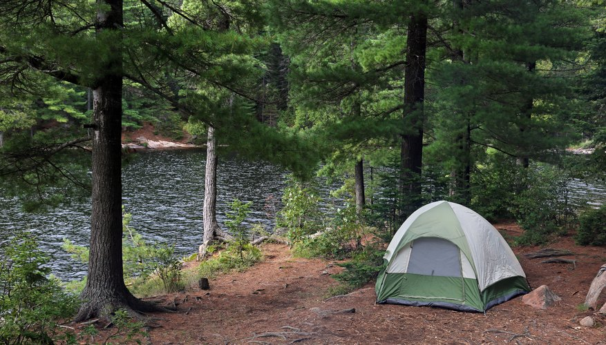 Can You Camp Anywhere in a National Forest?