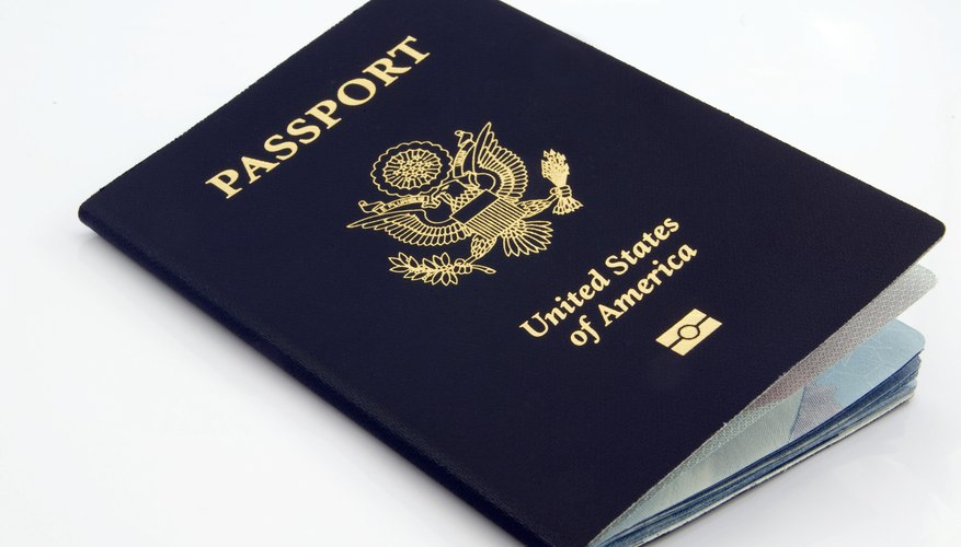 What Is a Type-P Passport?