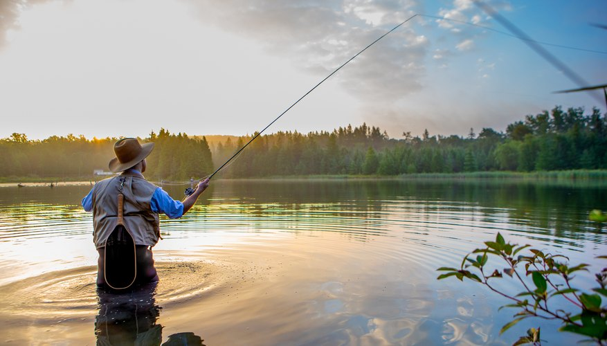 How Much Is a Fishing License in Tennessee