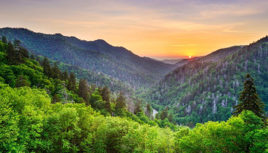 The Best Time to Visit the Smoky Mountains