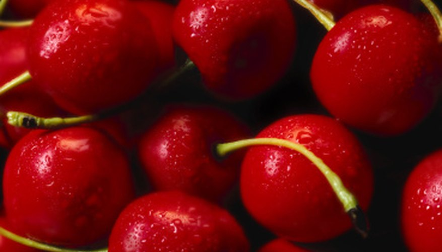 Bing cherries require pollen from a second variety of cherry tree