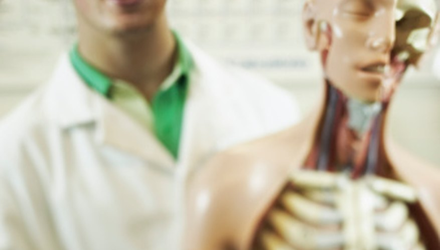 → ¿Qué clases se toman antes de ingresar a la carrera de medicina ...