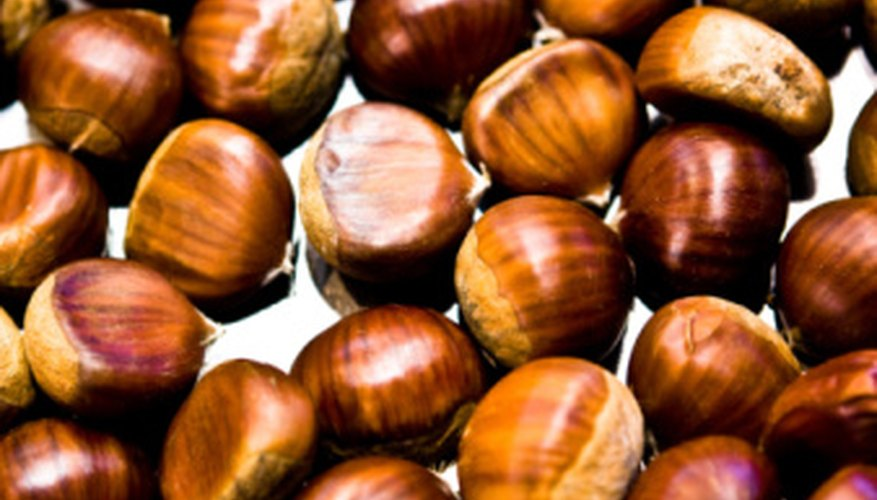 Chestnuts can repel spiders, but nobody is sure how or why.