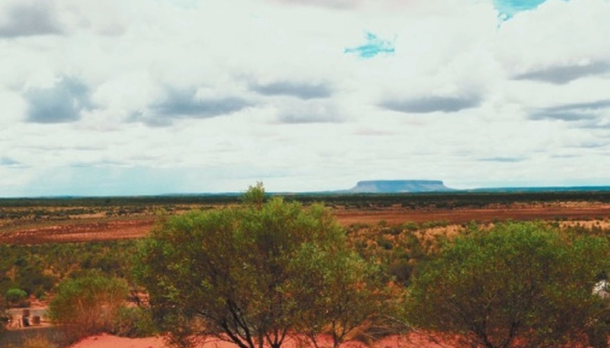 A large portion of Australia's interior is flat desert, called the Outback.