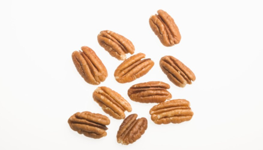 Mature pecan trees grow up to 70 feet in height.
