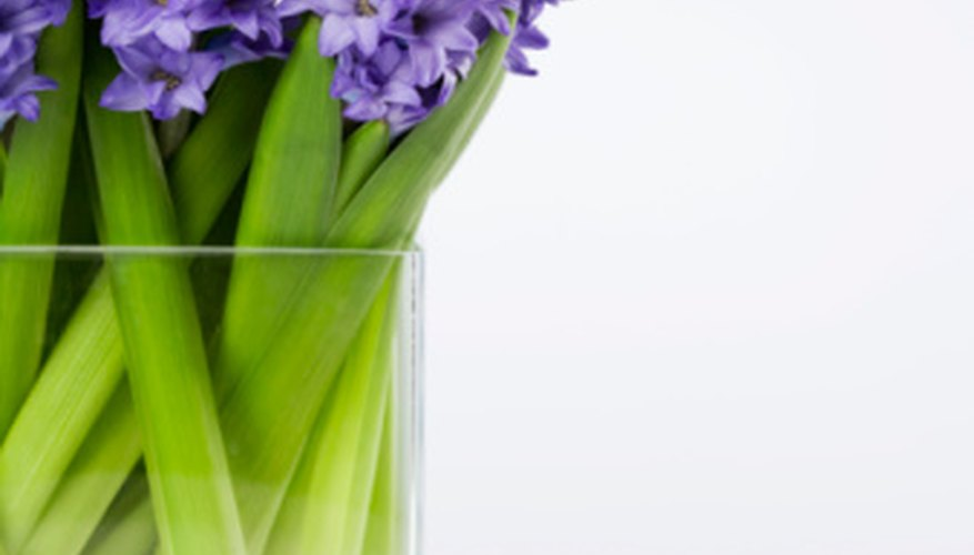A simple glass vase will put the focus on the flowers' beauty.