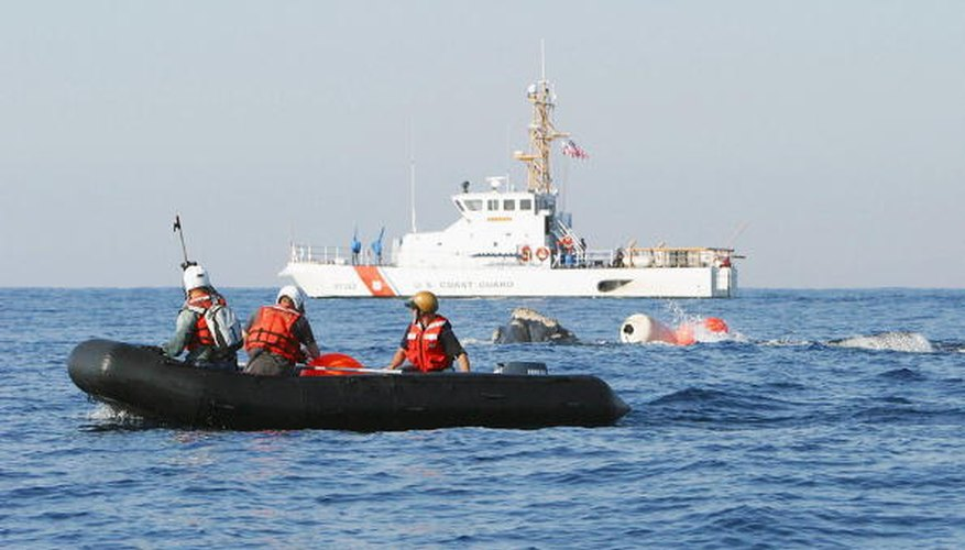 Rescuers attempt to free a northern right whale that became entangled in a commercial fishing net.