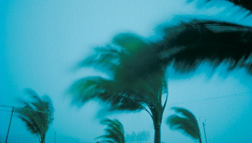 Florida insurers must offer discounts when customers mitigate homes against windstorm damage.