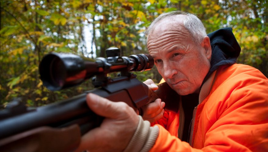 La mayoría de tiendas de armas en Florida tienen una variedad de armas y marcas y envían a todo Estados Unidos.