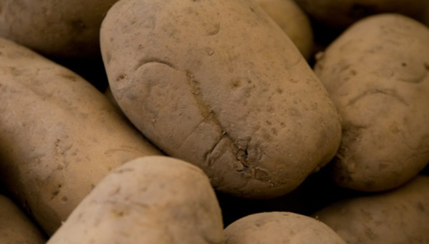 Potatoes must grow tubers to stay alive.