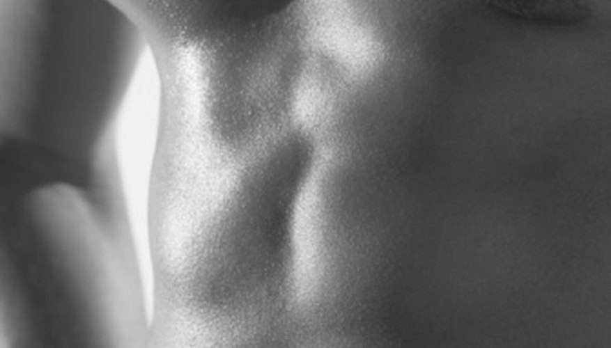 Abs and pecs are the main muscles on a man's torso.