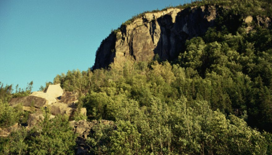 A de-vegetated canyon may see enhanced run-off, erosion and sedimentation.