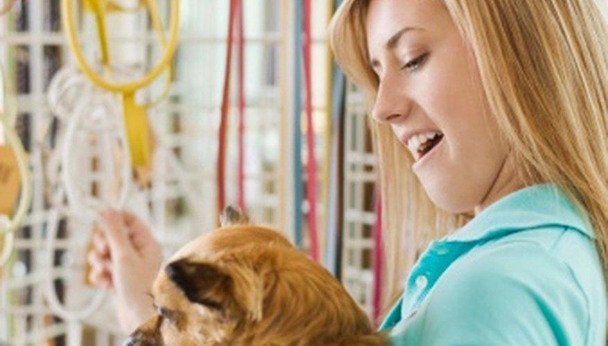 Los dueños de los perros que quieren vestir a sus mascotas son una serie de clientes objetivos.