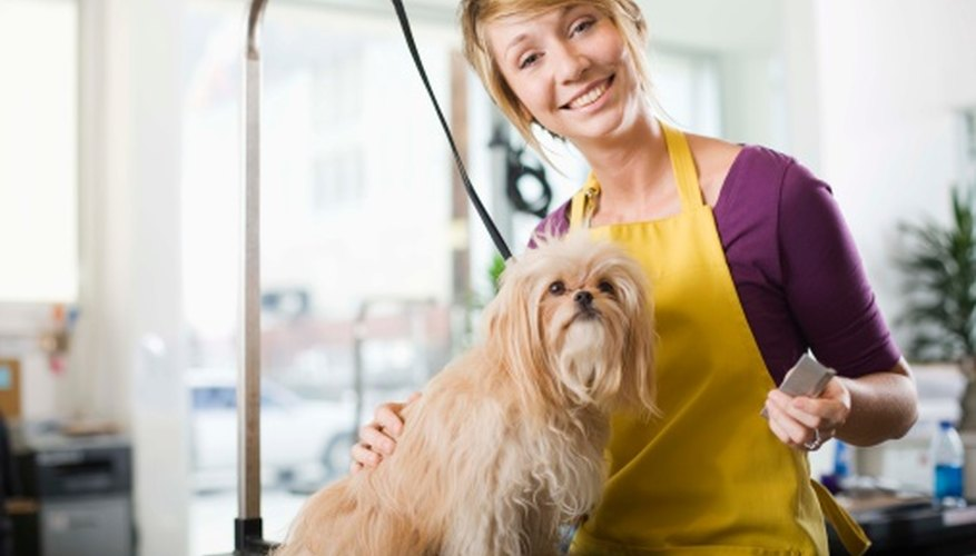 How Much Do Self Employed Dog Groomers Earn Bizfluent