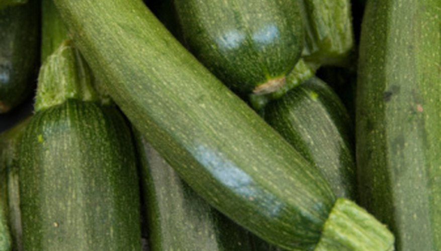 Zucchini is a popular summer squash that can be prepared in many different ways.